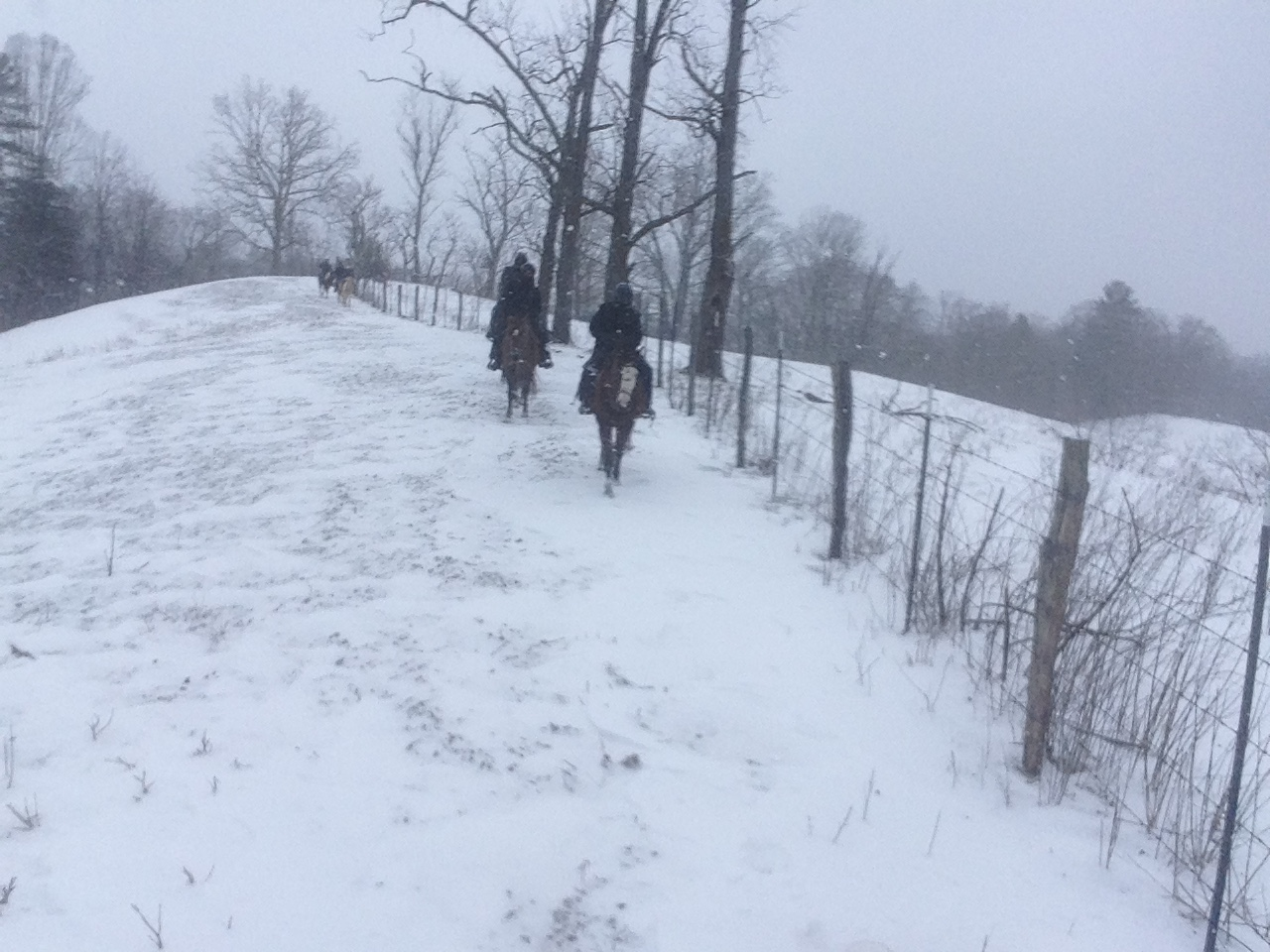 Horseback riding in the snow.