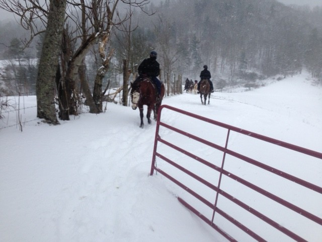 Group Heading Out Horsebacking