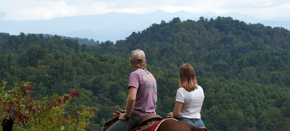 Horseback Trail Riding Near Asheville || Bison Farm